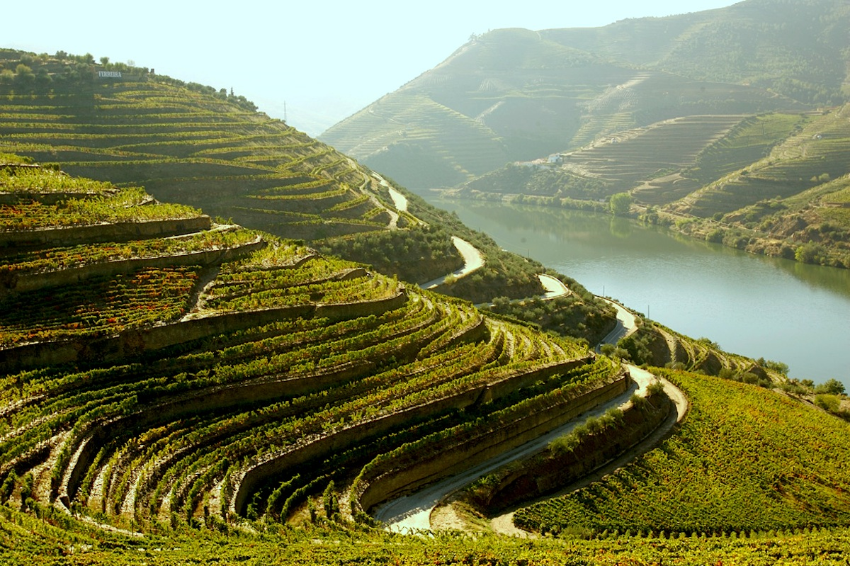 The Douro demarcated wine region - Portugal